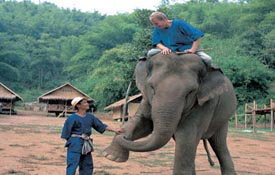 Mahout Training at Elephant Camp