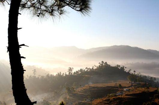 Shakti Kumaon View