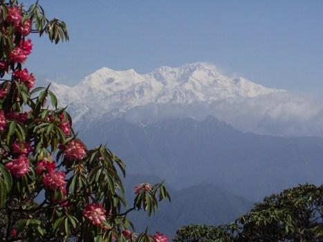 Shakti Sikkim