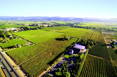 Peju Winery Aerial - Rutherford